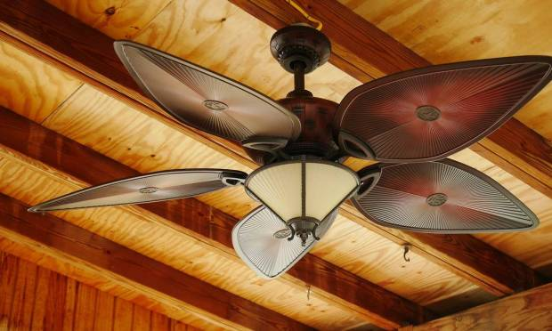 Using the ceiling fan for 8 hours a day generates a cost of only R$18 per month.  However, it is important to avoid leaving the appliance turned on when no one is in the room.  When buying, remember that the larger the diameter of the fans, the higher the power consumption.  Photo: Pixabay