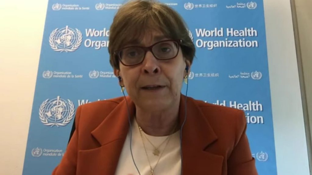 WHO director says new pandemic is 'a matter of time' |  the health
